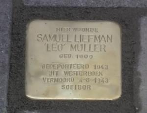 Muller Leo
